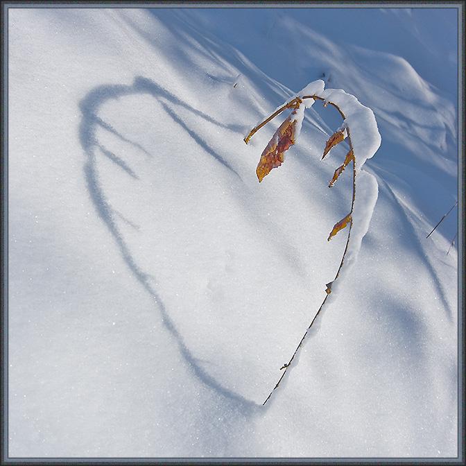 Я люблю зиму !!!