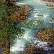 У истоков реки Мажой - Алтай Фото, автор: Джазатор