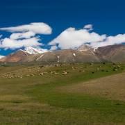 Гора Ржаная