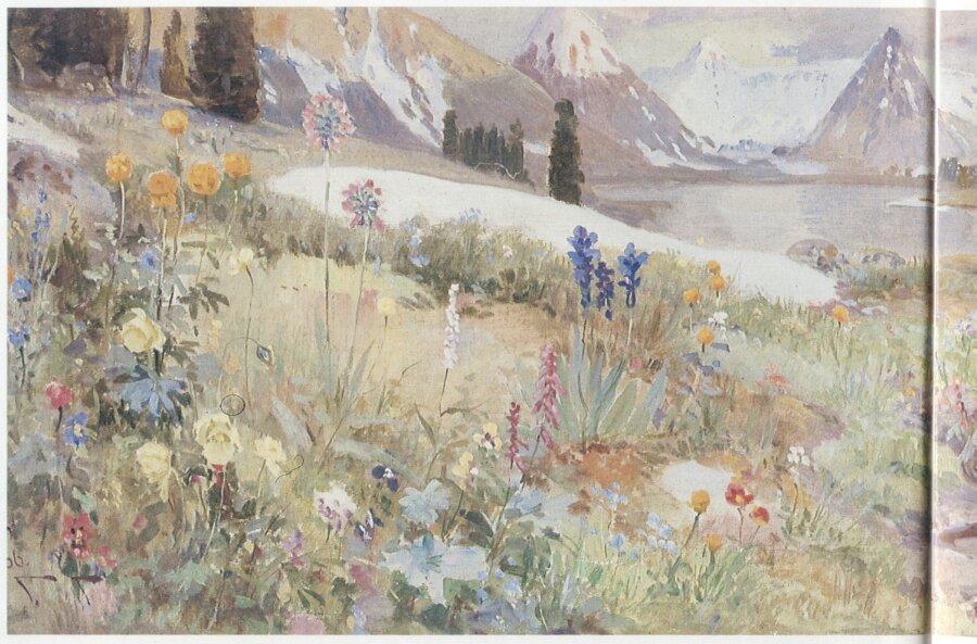 Чорос-Гуркин, Альпийский луг